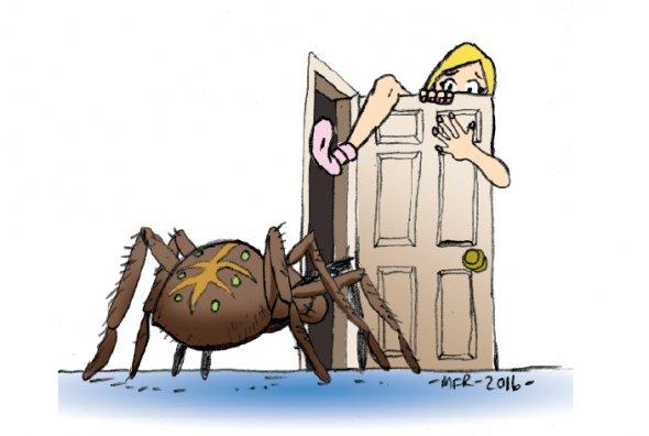 Pest Control Please
