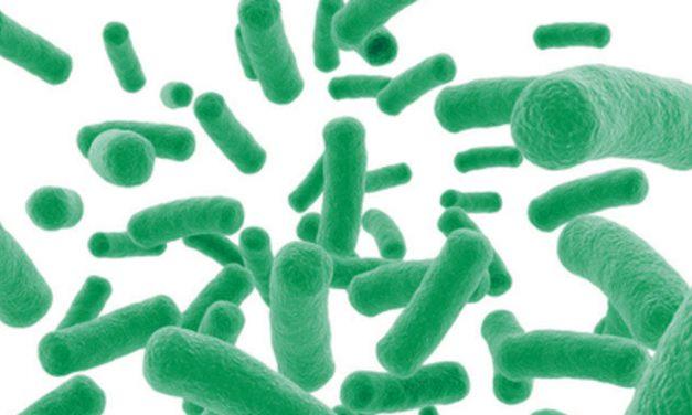 "Microbes ""R"" Us"
