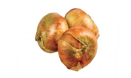 Georgia's Other Peach: The Vidalia® Onion