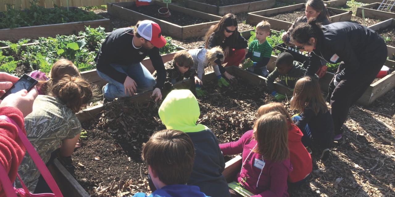 Raising Green Readers