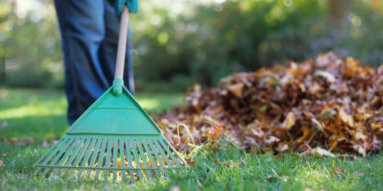 Sprucing up Your Home & Yard