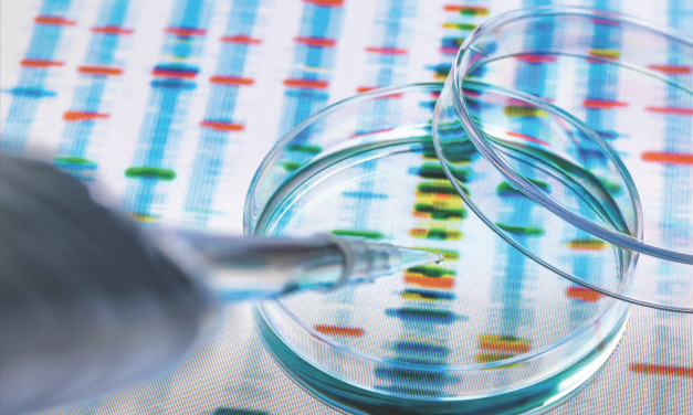 The Respect of DNA, Part 2