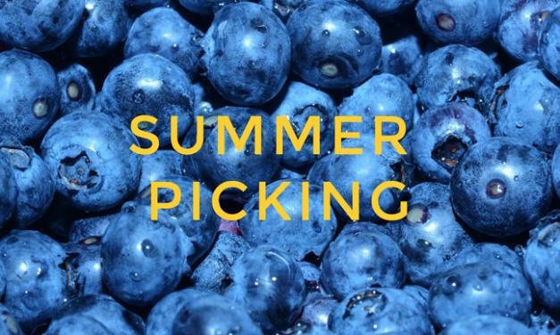 Blueberry Pickin' Around the Corner