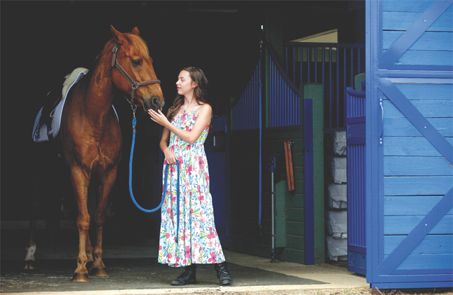 Beauty and Bridle