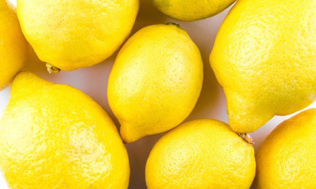 Lemons?! We Got This!